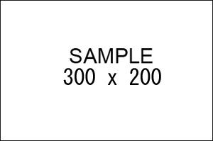sample300x200